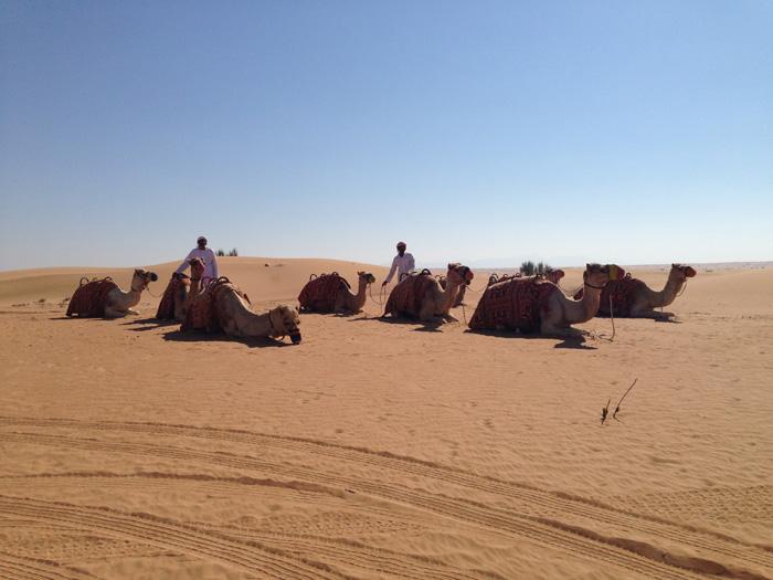 desierto-6