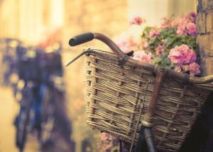 bicicleta-bici-bike-bicycle-deco-decoracion-decoration-12